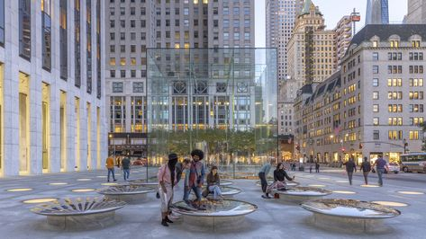 Gallery of Apple Store Fifth Avenue / Foster + Partners  - 4