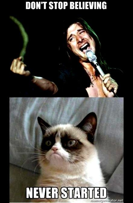 Funny Grumpy Cats Songs Funny Quotes Grumpy Cat Humor Funny Grumpy Cat Memes Grumpy Cat Birthday
