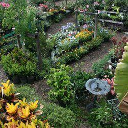Earl S Garden Nursery Tampa Fl