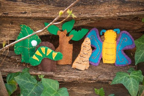 life cycle of a butterfly finger puppets