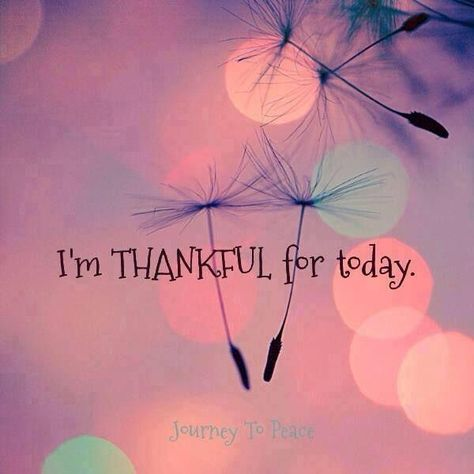 affirmations can change your inner and outer world. I am thankful for today! Every day is a gift, be thankful! Positive Thoughts, Positive Quotes, Motivational Quotes, Inspirational Quotes, Emo Quotes, Scorpio Quotes, Qoutes, Attitude Of Gratitude, Grateful Heart
