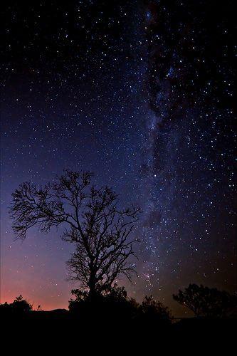 Homebase Milky Way Sky Full Of Stars Star Sky