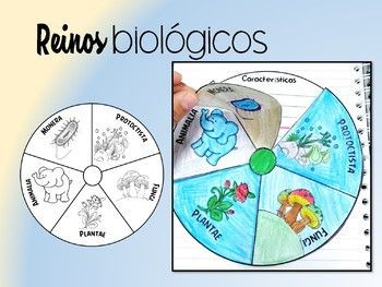 Material Interactivo De Los 5 Reinos Biológicos Consta De 2 Páginas La Primera Contiene Una Rule Interactive Notebooks Learning Activities Teacher Newsletter