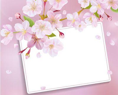 احسن الصور ورود و زهور يمكن الكتابه عليها بطاقات ورود و زهور فارغة للكتابة عليها خلفيات ورود و زهور فارغة للكت Flower Frame Flower Border Flower Painting