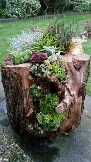 Beautiful Home Garden Designs. Beautiful Home Garden Designs. The post Cheap Landscaping Ideas. Beautiful Home Garden Designs. # appeared first on Vorgarten ideen. Succulent Gardening, Succulents Garden, Container Gardening, Succulent Garden Ideas, Succulent Planters, Vegetable Gardening, Organic Gardening, Indoor Gardening, Simple Garden Ideas