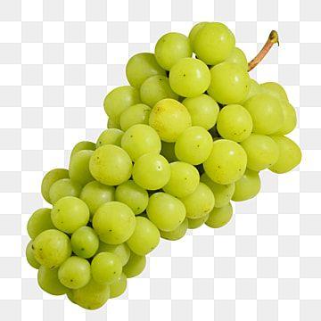 عنقود عنب لذيذ سلسلة لذيذ العنب Png صورة للتحميل مجانا Grapes Fruit Delicious