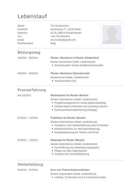 Mein Europass Lebenslauf von 2011 - Seite 1 | Klassischer Lebenslauf ...