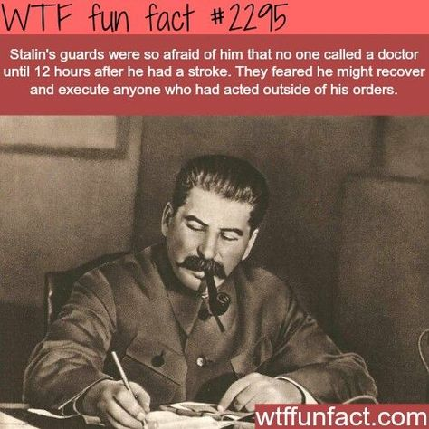 33 Weird and Random Facts for your Day - Wow Gallery