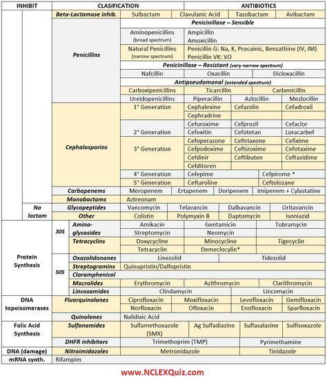Antibiotics Cheat Sheet | anim | Pharmacology nursing