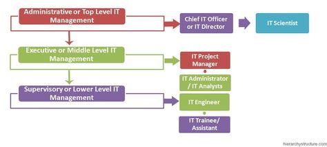 It Management Hierarchy Management Hierarchy Pmbok