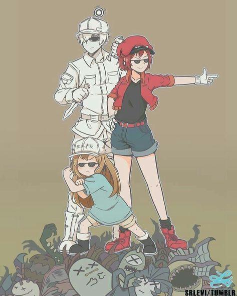 Hatarakusaibou (Cells at work) Madara Susanoo, Boruto, Awesome Anime, Anime Love, Noragami, Chibi, Fan Art Anime, Tamako Love Story, White Blood Cells