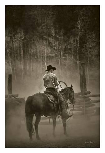 COWBOY ART PRINT Lost Canyon Roundup by Barry Hart 16x24 Cattle Farm Poster