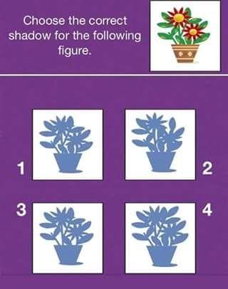 فوازير صعبة جدا للأذكياء فقط وحلها وألغاز متنوعة ومضحكة موقع مصري Frame Shadow
