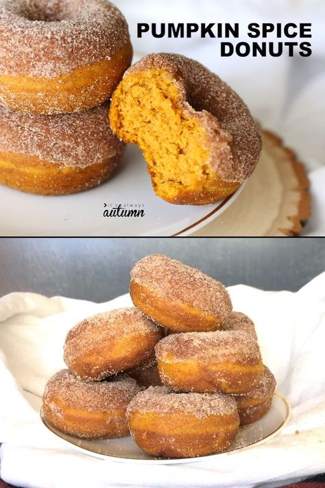 baking recipes Pumpkin Spice Donuts are your new favorite fall treat! Theyre baked, not fried, and they are perfectly soft + full of pumpkin spice flavor. Fall Desserts, Just Desserts, Delicious Desserts, Yummy Food, Thanksgiving Desserts, Greek Dessert Recipes, Thanksgiving Games, Baking Desserts, Health Desserts