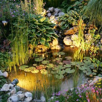 Gartenteich Anlegen Bepflanzen Und Pflegen Praktische Tipps Kleiner Gartenteich Gartenteich Gartengestaltung