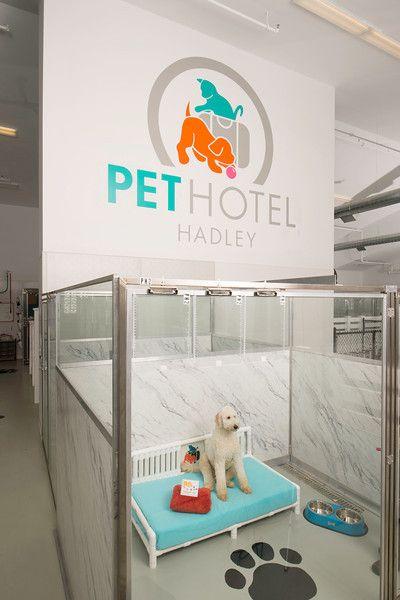 Pet Hotel Hadley Masonco Pet Hotel Dog Hotel Pets