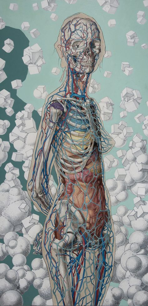 A master draughtsman, Michael Reedy shows his versatility as an artist in his mixed media artworks. Elements of photorealistic anatomy drawings are blended with pop surrealist fare, combining anato… Anatomy Drawing, Anatomy Art, Human Anatomy, Inspiration Art, Art Inspo, Portrait Inspiration, Medical Illustration, Illustration Art, Illustrations Médicales