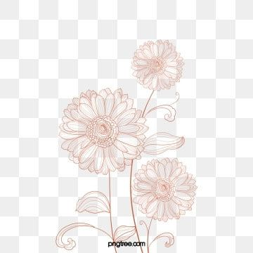 Rose Gold Line Drawing Plant Flower Rose Gold Line Drawing Line Png Transparent Clipart Image And Psd File For Free Download In 2020 Plant Drawing Flower Png Images Rose Clipart