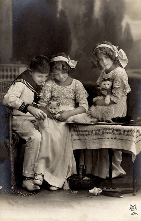 :::::::::: Antique Photograph ::::::::::  Adorable siblings with cats!
