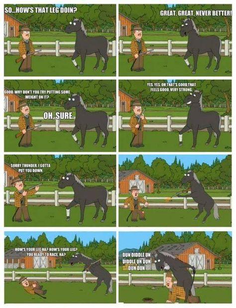 Family Guy Horse : family, horse, Family, Ideas, American, Funny