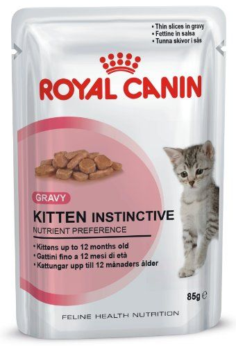 8 Week Old Kitten Feeding Weight Care And Routines Evcil