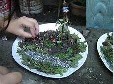 Pin by The Girl who Gardens on Mini Gardens | Mini garden, Garden ...