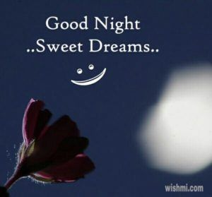 goodnight good night good