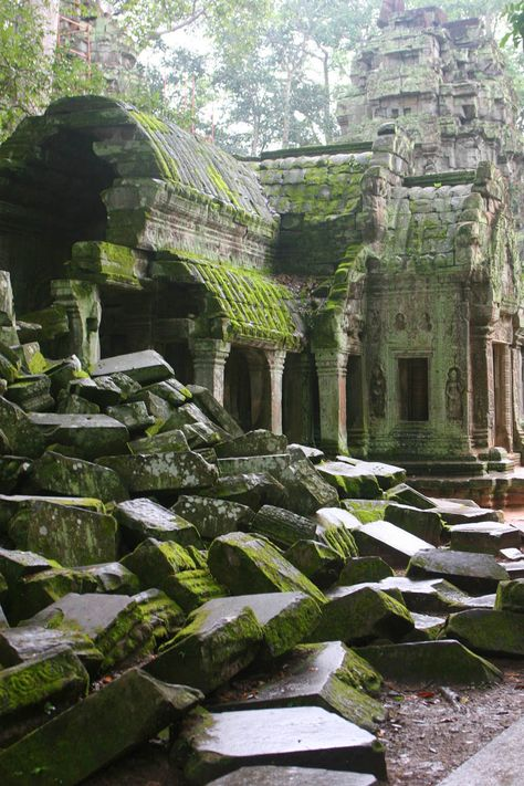 Ta Prohm Temple at Angkor Cambodia Thailand Laos Asia Travel Destinations Places To Travel, Places To See, Places Around The World, Around The Worlds, Angkor Wat Cambodia, Best Honeymoon Destinations, Travel Destinations, Vacation Travel, Temple Ruins