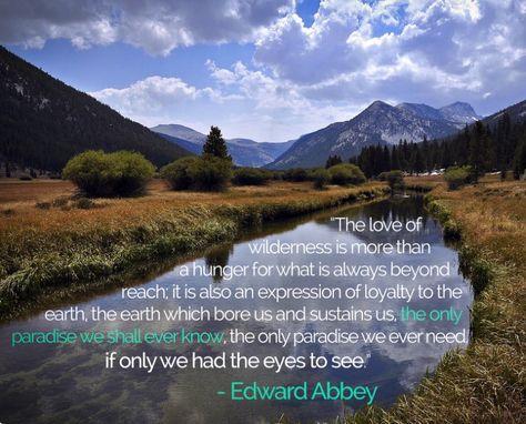 Top quotes by Edward Abbey-https://s-media-cache-ak0.pinimg.com/474x/19/6b/58/196b58dcee7b7b2496845fc7bcd17e40.jpg