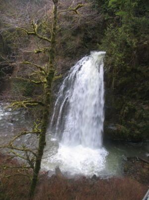 294 best Hiking images on Pinterest Hiking Portland oregon and