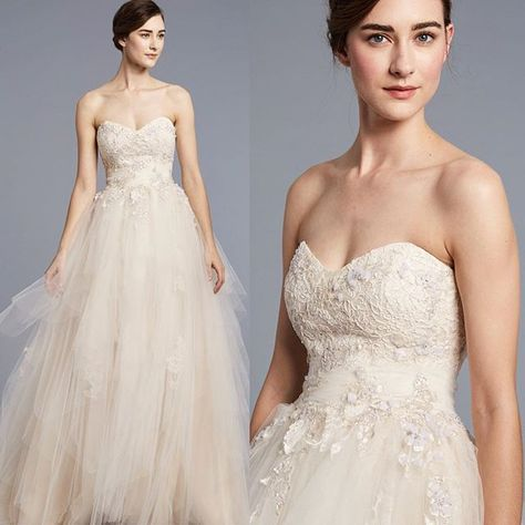 appliques Confection of Delicate Tulle!...