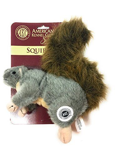 Akc American Kennel Club Plush Squirrel With Squeaker Premium Dog