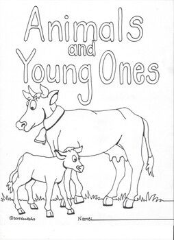 Animals And Young Ones Physical Resemblances Young Ones How To