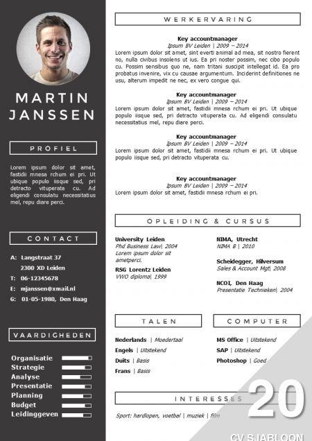Voorbeeld Modern Curriculum Vitae BQ15 | Belbin.Info