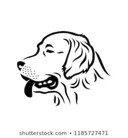 Royalty Free Golden Retriever Dog Stock Images Photos Vectors