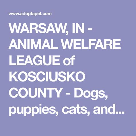 Warsaw In Animal Welfare League Of Kosciusko County Dogs