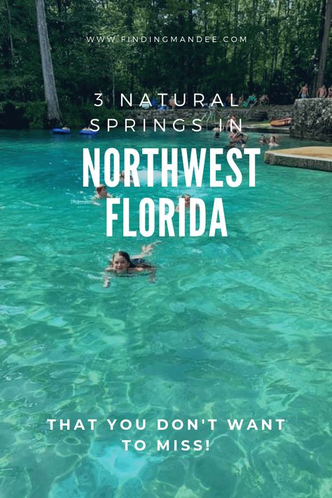 These cool, crisp swimming holes, known mostly to locals, are as beautiful as they are fun. Don't miss these 3 natural springs in Northwest Florida! Florida Vacation Spots, Florida Camping, Visit Florida, Old Florida, Florida Travel, Vacation Places, Places To Travel, Places To See, Camping Resort