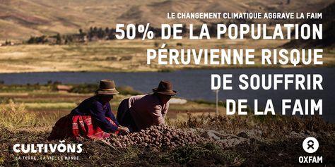 Le changement climatique aggrave la faim dans le monde. Selon des estimations, la moitié de la population au Pérou risque de souffrir de la faim. www.oxfam.org/fr/cultivons