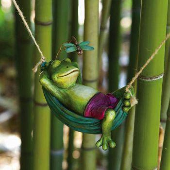 Frog Discover Day Dreamers Frog ในป 2020 กบ ร ปส ตว น าร ก ร ปส ตว ขำๆ