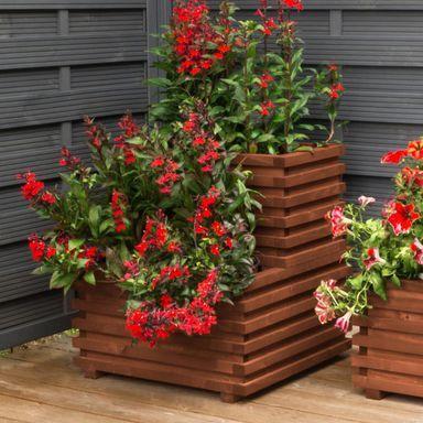 Donica Ogrodowa 59 X 34 Cm Drewniana Brazowa Wien Vitrum Werth Holz Donice Ogrodowe W Atrakcyjnej Cenie W Sklepach Leroy Merlin Plants