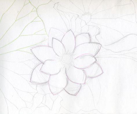Flowers Drawing Simple Lotus 34 Ideas