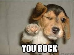 You Rock Meme Birthday Meme Dog Funny Happy Birthday Meme