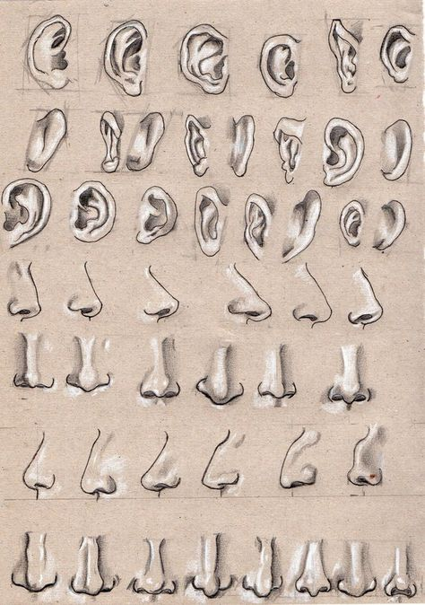 Ear and nose by Lemures87 on DeviantArt