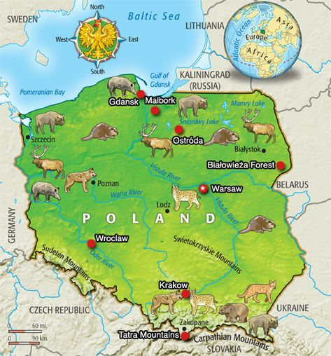 Image result for time for kids country poland