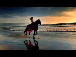 Cirque Du Soleil Alegria Youtube Horses Beautiful Horses Horse Love