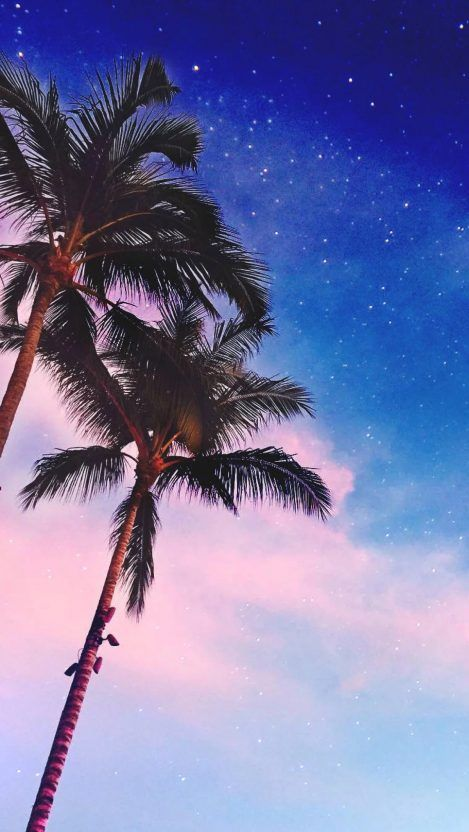 Iphone Wallpapers For Iphone 8 Iphone 8 Plus Iphone 6s Iphone 6s Plus Iphone X And Ipod Iphone 6s Wallpaper Smartphone Wallpaper Palm Tree Iphone Wallpaper
