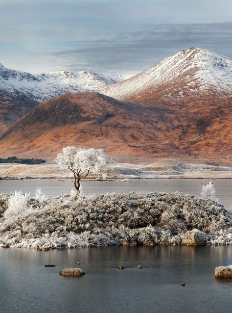 Rannoch Moor, Scotland  its stunning very picturesque. Train station it's wee get to see steam train & get good cream tea.