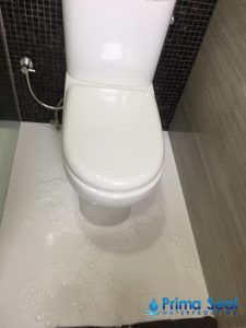 Miraculous Pin By Prima Seal Waterproofing On Waterproofing Articles Pdpeps Interior Chair Design Pdpepsorg