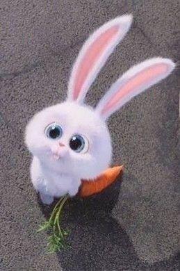Cute Pic Hd Cute Bunny Cartoon Cute Disney Wallpaper Cute Cartoon Wallpapers