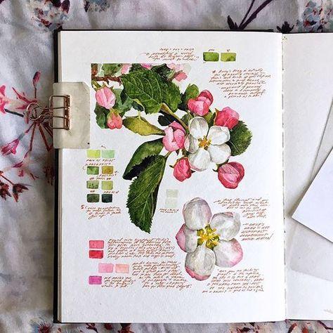 art gcse - art gcse ` art gcse sketchbook ` art gcse final piece ` art gcse mindmap ` art gcse sketchbook layout ` art gcse 2020 ` art gcse title page ` art gcse ideas Illustration Cartoon, Gravure Illustration, Flower Sketches, Art Sketches, Art Drawings, Kunstjournal Inspiration, Sketchbook Inspiration, Sketchbook Ideas, Art Floral